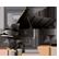 Steinway & Sons Model D